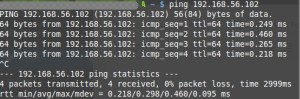 ping-host-to-guest