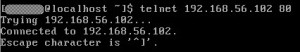 telnet-from-guestOS